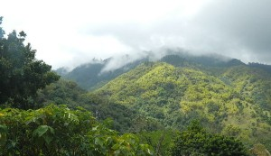 Inspirational mountain view