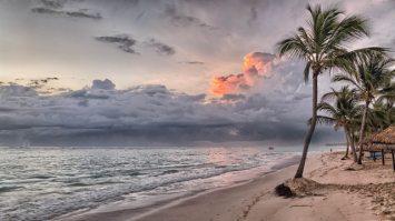 The Beach or the classroom